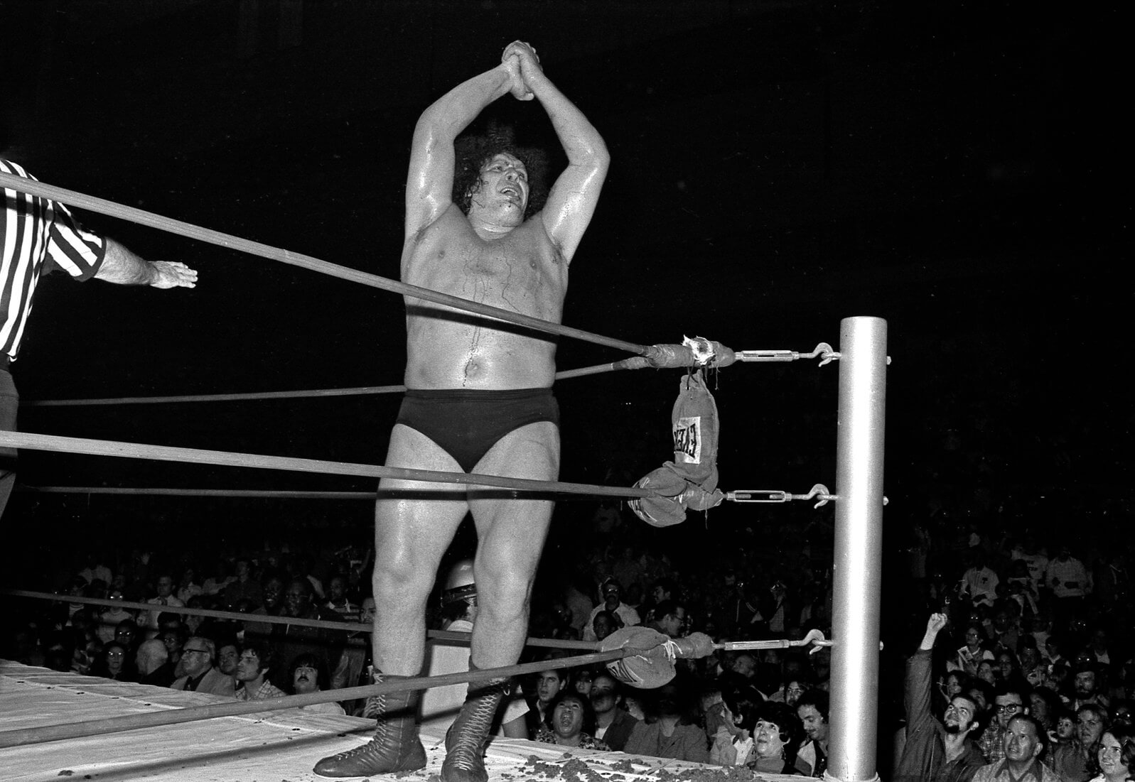 Andre the Giant in Ted Pushinsky's <em>Fightin' and Dancin'</em> series.